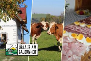 Austrijanci imaju više od 2.000 farmi koje se bave turizmom
