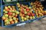Poljska očekuje najmanju berbu voća od 2010. godine