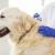 Koje su najčešće reakcije na vakcinu kod psa?