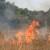 Ljeto bi moglo biti pakleno: Ne palite vatru u prirodi i ne radite dodatni posao vatrogascima