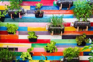 Uspravni vrtovi - odlično rješenje za mala dvorišta i balkone