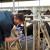 Postani poljoprivredni ili veterinarski tehničar, prijave su u tijeku!
