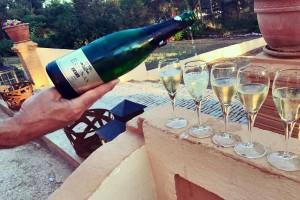 Vera de Estenas vina: Novi u registru zaštićenih oznaka porekla