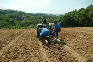 Josip Šumić: Očekujemo ekspanziju vinogradarstva u Srednjoj Bosni s ovogodišnjom berbom