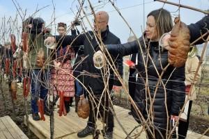Tradicionalna Vinceška obilježena u Baranji - vinogradarska godina može započeti