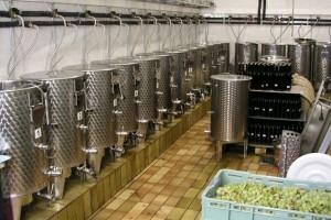 Za preradu i marketing u proizvodnji vina izdvojeno 250 miliona dinara