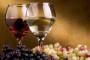 Vinogradarski registar - podnošenje obveznih izjava