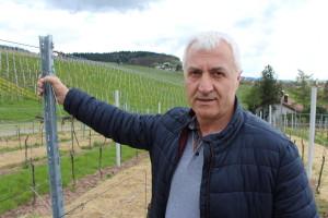 Dr.sc. Vlado Babić: Hrvatskim vinima treba dobra marketinška strategija