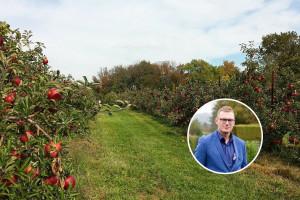 Almir Juzunović: BiH ima dobre agroekološke uslove za proizvodnju voća i dobre perspektive za izvoz