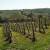 Započet projekat navodnjavanja voća u Topoli vredan oko četiri miliona evra