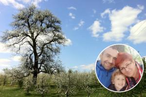 Novinar i pravnik poljoprivredne vjeroispovjesti ili kako je Ružicu Mauna Bošnjak spasio voćnjak