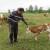 Na vrijeme prepoznali da se od mlijeka ne da živjeti, prodaja teladi omogućila je OPG Vrbanić solidan život od vlastitog rada