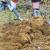 Okopavajući vrt pronašao topovsko zrno iz 2. svjetskog rata