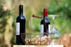 Nekoliko stotina ljudi na degustaciji sve kvalitetnijih bjelobrdskih vina