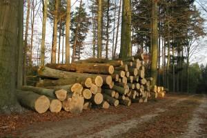 Nastupa potpuna zabrana izvoza ove prerađevine iz BiH?