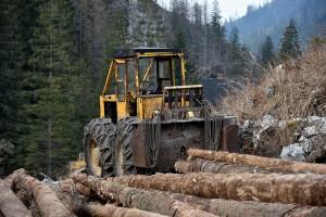 Vlada FBiH: Potrebno hitno razmotriti prijedlog Zakona o šumama!