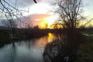 U kraljevačkim rekama sve manje ribe