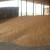 Odugovlače s prodajom pšenicezbog smanjenja zaliha i rasta cijena