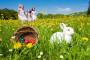 Jaja i zečevi simboli su Uskrsa, znate li zašto?