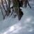 Zbog visokog snijega, divljač u opasnosti