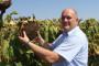 HDSSB: Kraljička za ministra poljoprivrede!