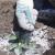 Riješite se štetočina i glodara pomoću dijatomejske zemlje