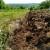 Konkurs za raspodelu sredstava za korišćenje poljoprivrednog zemljišta otvoren do 6. jula