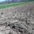 Subvencionira se poboljšanje kvaliteta tla - po korisniku do 3.000 KM