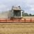 Ukrajina već izvezla više od 16 miliona tona žitarica