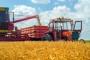 Počela žetva pšenice, otkupna cijena nepoznata