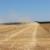 Vučković: OPG-ovi će imati prioritet na natječajima za državno poljoprivredno zemljište