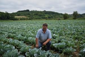 Porodica Milutinović uspešna u proizvodnji povrća, cveća i kiselog kupusa