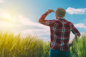 Budućnost ZPP-a u potencijalnom problemu: strateško planiranje poljoprivrede vraća se državama članicama
