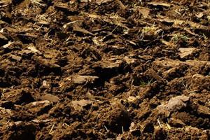 Gdje su nestala plodna tla?