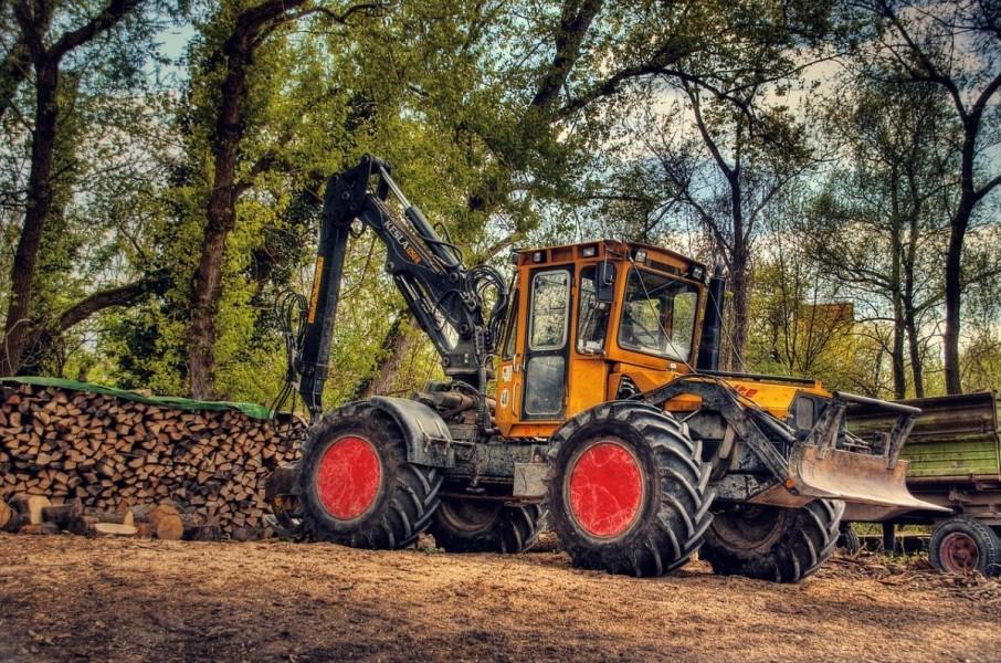 Pravilnik o provedbi Mjere 8 za šumske tehnologije!