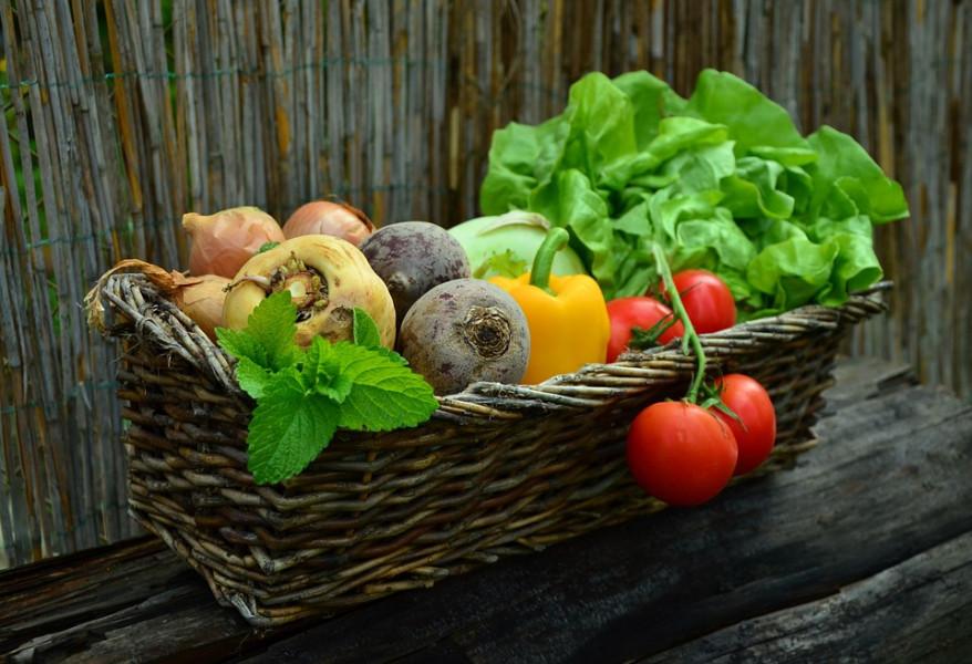 Kako što duže očuvati povrće nakon berbe