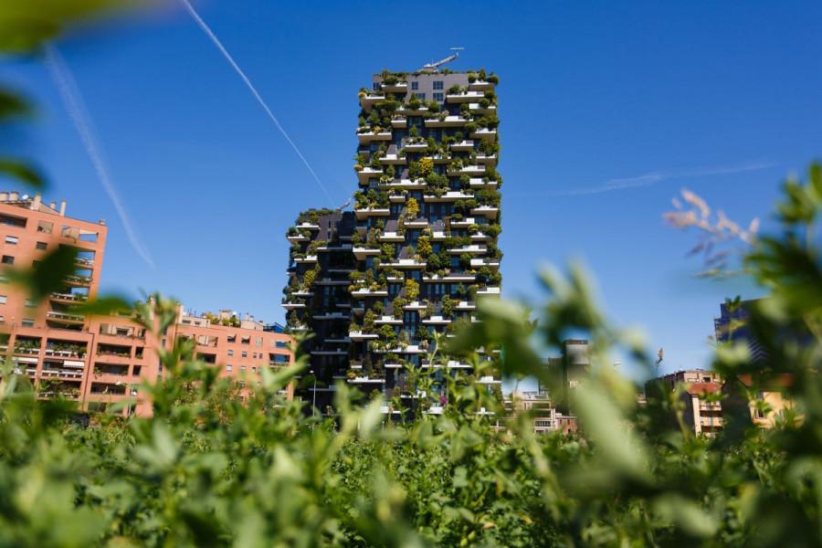 Urbano šumarstvo: Zeleni pojas oko grada