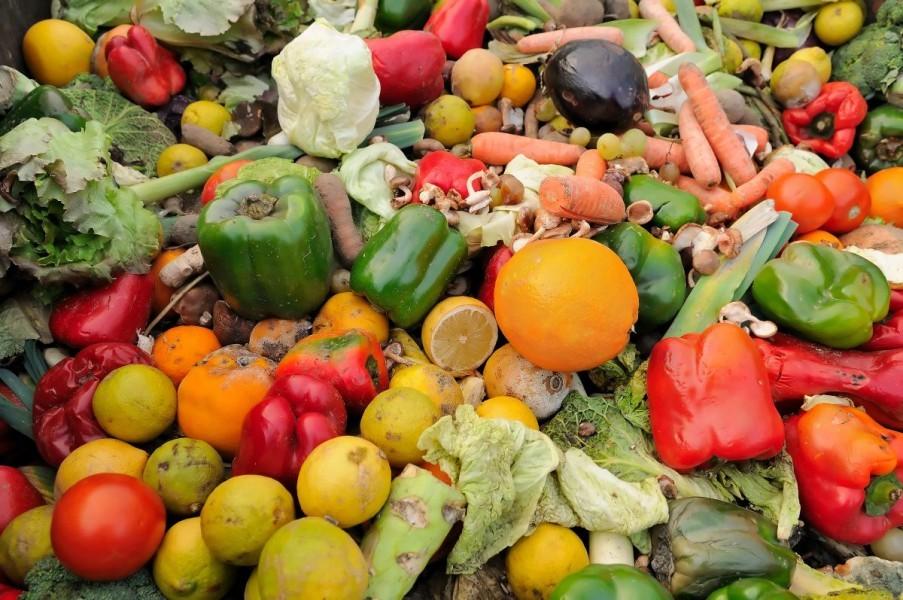 Bacamo više od 30 posto hrane!