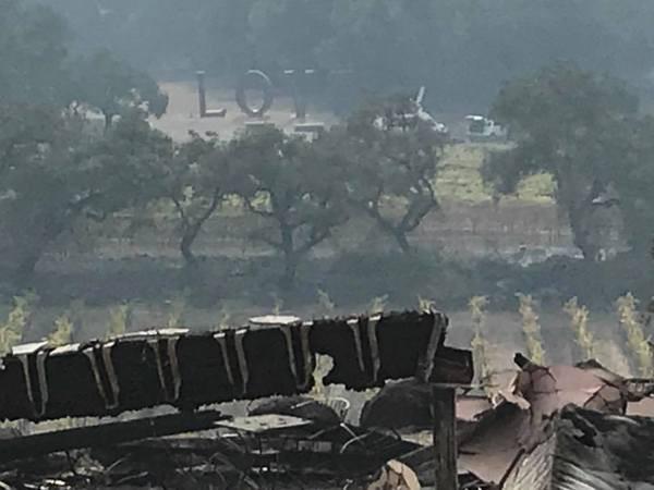 Izgorjeli povijesni vinogradi, poginulo 15 ljudi