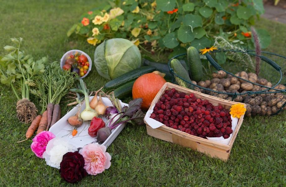 Voće i povrće iz RS na njemačkom tržištu?