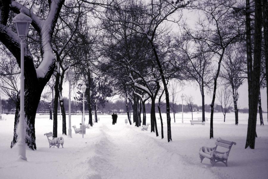 Ledeni dani i sneg