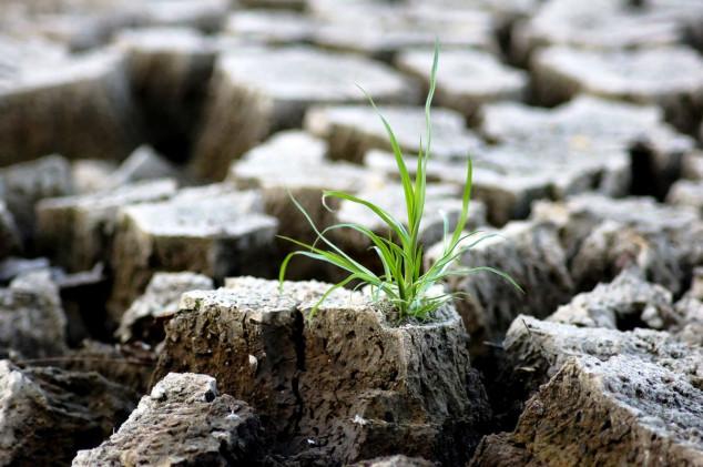 Sami ustanovite vrstu tla i popravite ga!