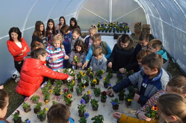 Najstarija škola u Srbiji dobila plastenik