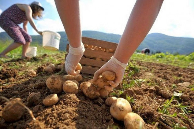 Besplatna obuka o organskoj proizvodnji