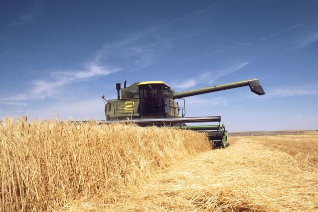 Značajan rast izvoznih cena ruske pšenice