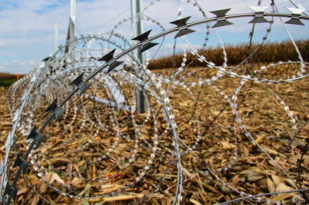 Žilet žica priječi prirodne migracije divljači