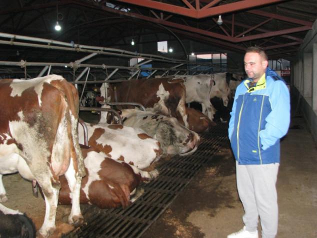 Godišnje isporuče pola miliona litara mlijeka!