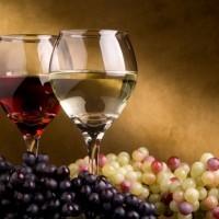vinapisacic
